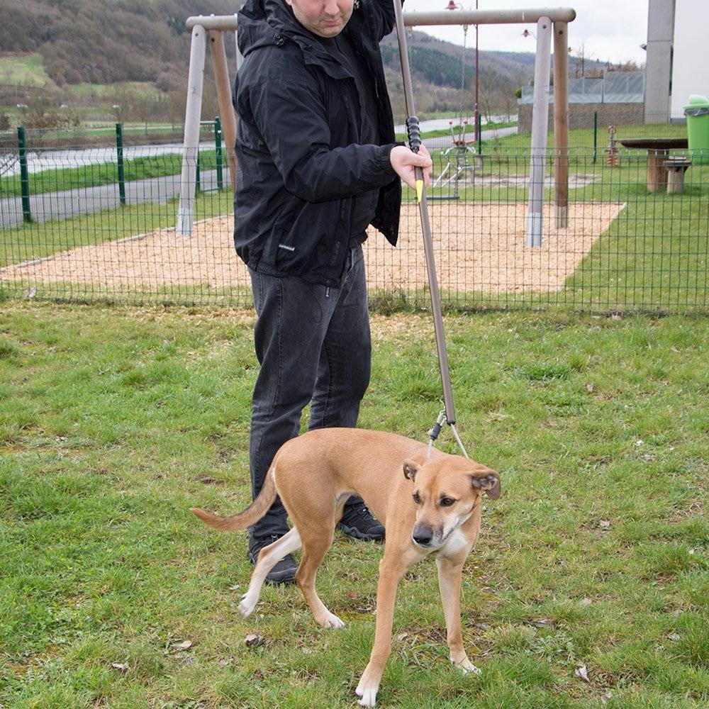 Bastone cattura cani con dispositivo anti strangolamento eurodog