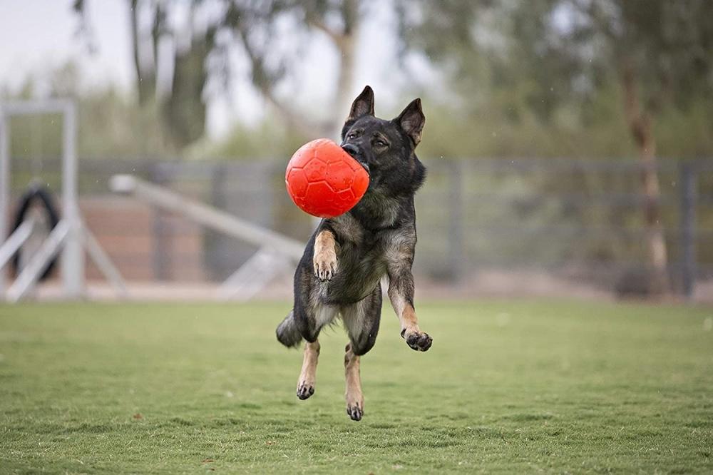 Pallone Jolly Soccer Ball Large per pastore tedesco