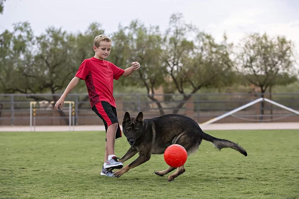 Pallone galleggiante Jolly Soccer Ball Large per cane