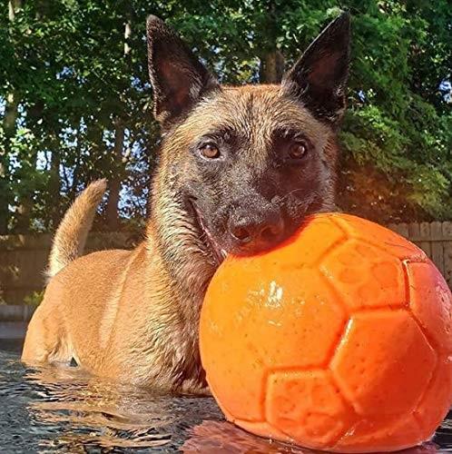 Pallone Jolly Soccer Ball Large per malinois